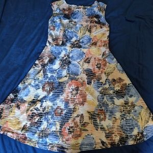 NEW Floral design shelby+ palmer dress size 8